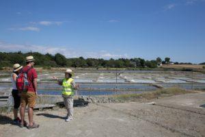 Visite de marais salants par l'association Les Amis des Sites @ Kercabellec | Mesquer | Pays de la Loire | France